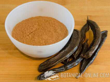 Photo of carob flour and carob beans