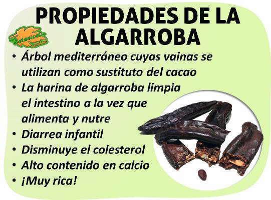 Propiedades medicinales de la harina de algarroba