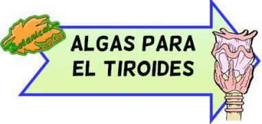 algas-tiroides
