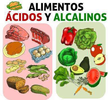 lista de alimentos acido base o alcalinos de la dieta segun ph