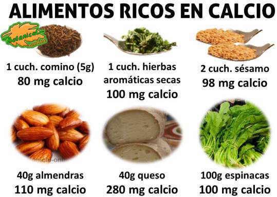 alimentos muy ricos en calcio con mucho calcio
