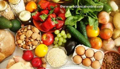 Por qu los ni os tienen obesidad - Que alimentos son antioxidantes naturales ...