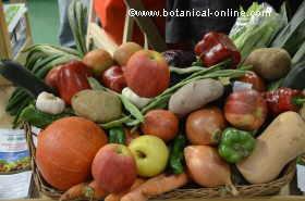 dietas vegetarianas pueden llevar a una falta de hierro
