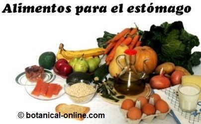 alimentos para el estómago