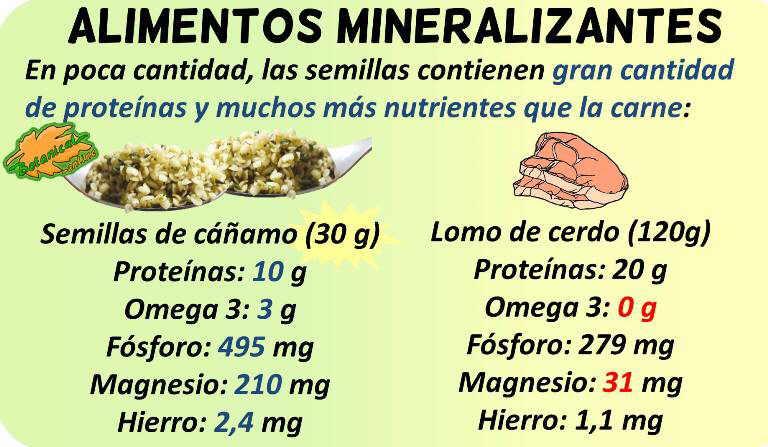 alimentos mineralizantes ricos en minerales