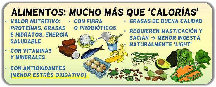 comida chatarra comida basura propiedades perjudiciales