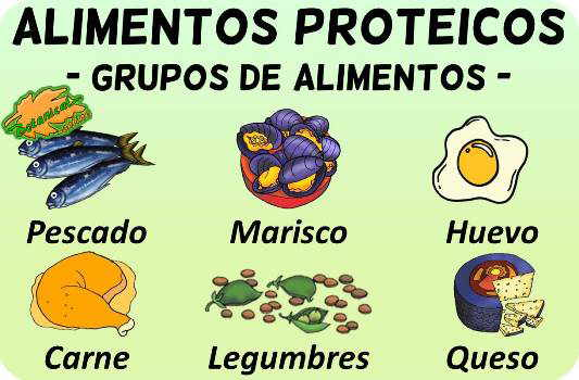 alimentos proteicos grupos clasificacion alimentos ricos en nutrientes