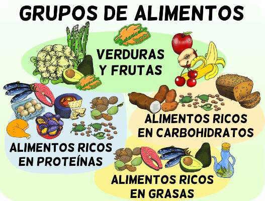 grupos de alimentos de la dieta clasificacion por nutrientes