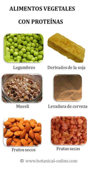 Alimentos ricos en prote nas - Alimentos con muchas vitaminas ...