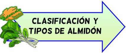 clasificacion y tipos de almidon