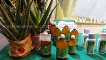productos naturales con aloe vera y planta