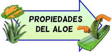 propiedades del aloe o sabila