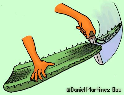 eliminar extremo de una hoja