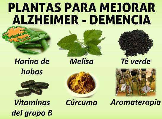 plantas, suplementos y terapias recomendadas para mejorar la progresión de la enfermedad de Alzheimer y la demencia
