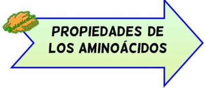 propiedades de los aminoacidos