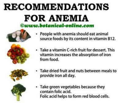 Plant based foods rich in iron anemia recommedations iron food sources vitamin c folic acid workwithnaturefo