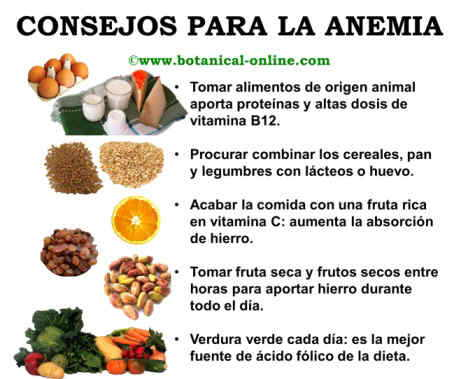 Anemia dieta for Productos con hierro