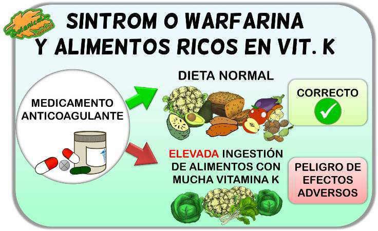 medicamentos anticoagulantes como el sintrom y contraindicaciones con alimentos ricos en vitamina K