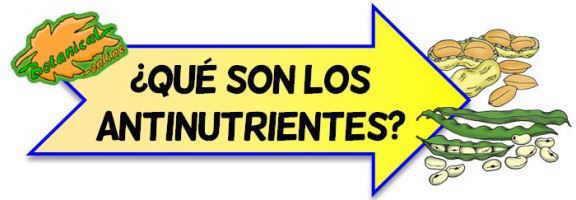 definicion de antinutrientes