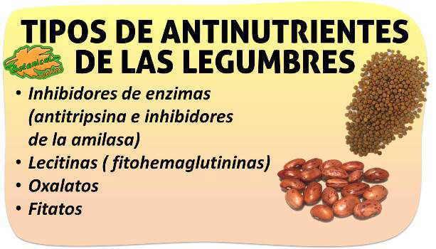 activar semillas, antinutrientes eliminar