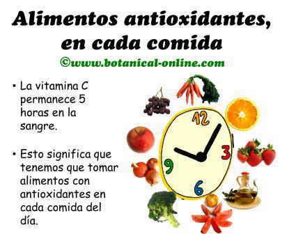 dieta con alimentos antioxidantes, vitamina c en cada comida