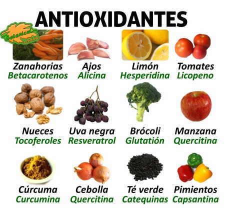Antioxidantes de los alimentos vegetales, frutas y verduras