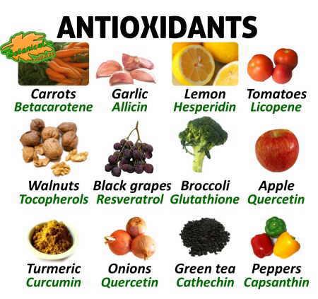 Image result for antioxidant