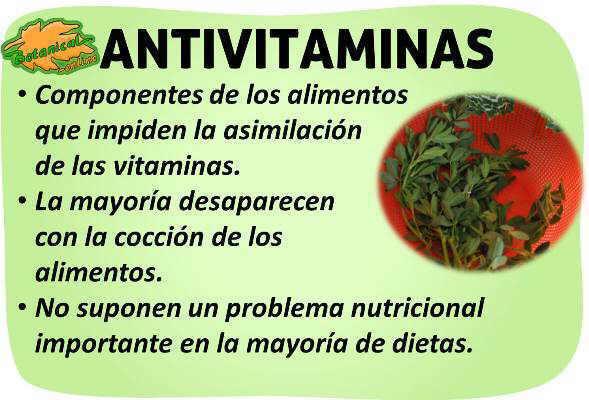 propiedades de las antivitaminas anti vitaminas antinutrientes de los alimentos