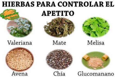 remedios naturales con plantas para reducir el apetito