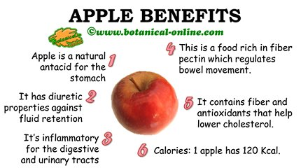 Nutritional value of apples