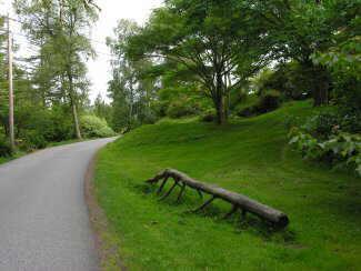 camino principal del Arboretum de Milde