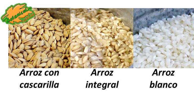 tipos de arroz según su refinamiento