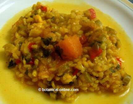 Dieta para el ni o obeso - Arroz con verduras light ...