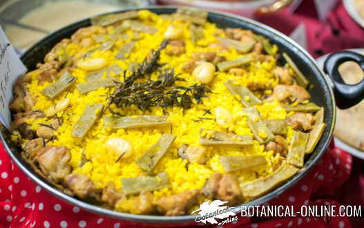 paella arroz