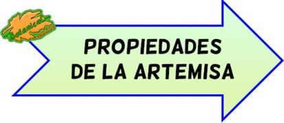 propiedades de la artemisa