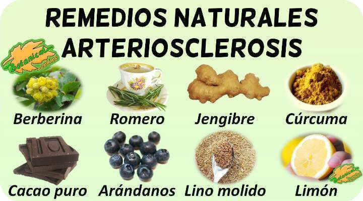 remedios naturales con plantas medicinales para tratamiento de la la arteriosclerosis