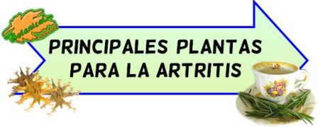 mejores plantas dolor articular