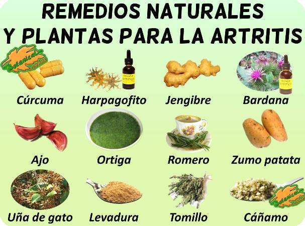 artritis artrosis remedios con plantas medicinales curar tratamiento natural