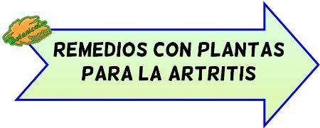 plantas para la artritis