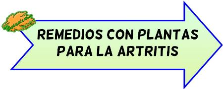 plantas artritis