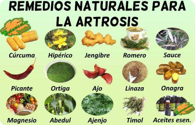 tratamiento natural de la artrosis con plantas medicinales