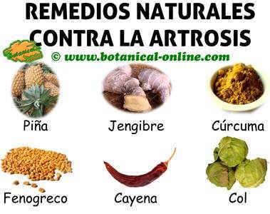 Tratamiento natural de la artrosis - Alimentos para mejorar la artrosis ...