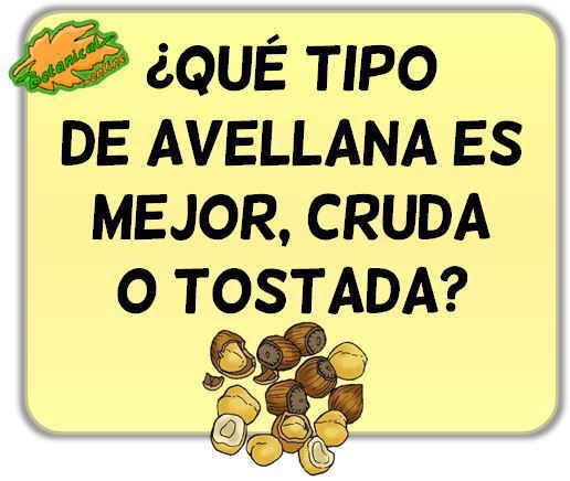 qué tipo de avellana es mejor comprar, cruda natural o tostada