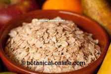 La avena es muuy rica en vitamina B5 o ácido pantoténico