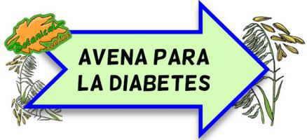 avena para la diabetes