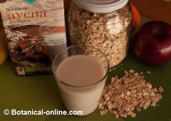 bebida o leche vegetal de avena con copos de avena