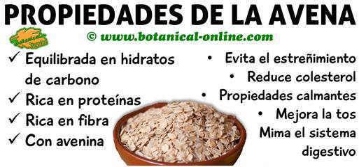 se puede comer jamon con el acido urico alto que pasa cuando el acido urico esta bajo metabolismo de las purinas y acido urico