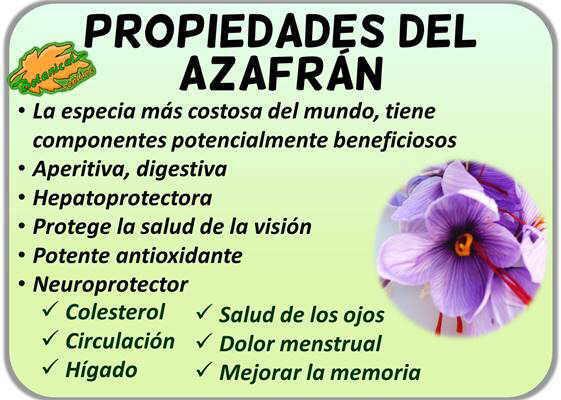 propiedades medicinales del azafran