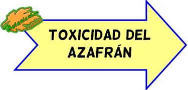 toxicidad del azafrán