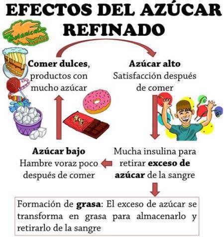 Efectos del azúcar refinado, digesion de los dulces industriales